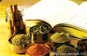 Achieve Optimum Health with an Individualized Ayurvedic Regime Ayurveda Medicine